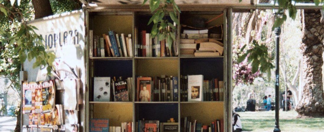 Bücher Regal Lesen